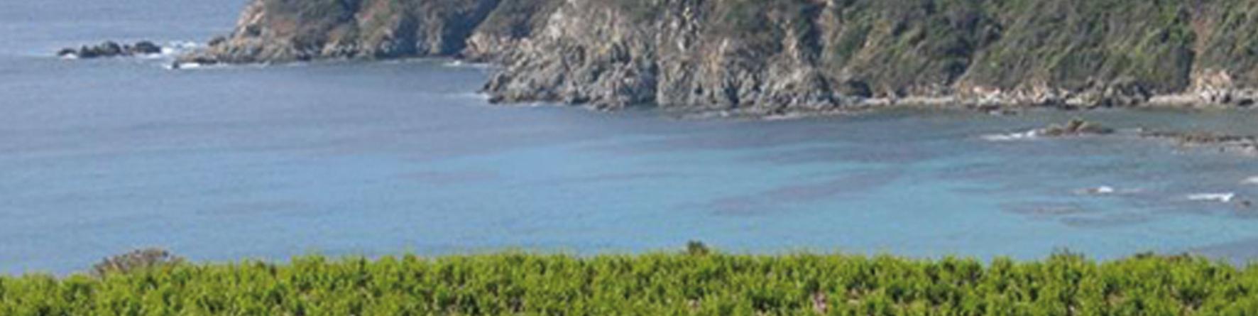 Domaine de la Tourraquek