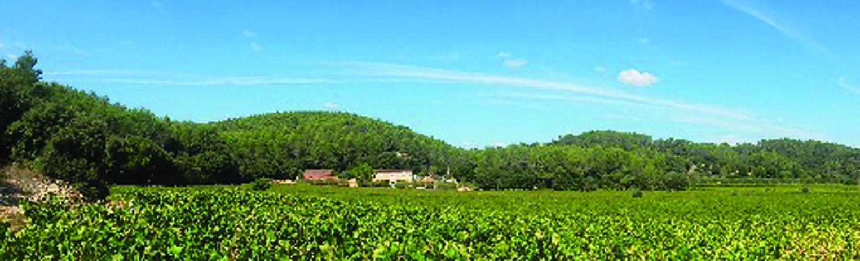 Château Barbeiranne1